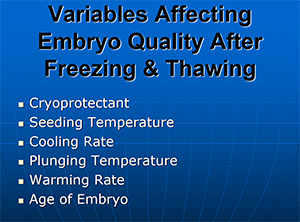 Variables Affecting Embryo Quality